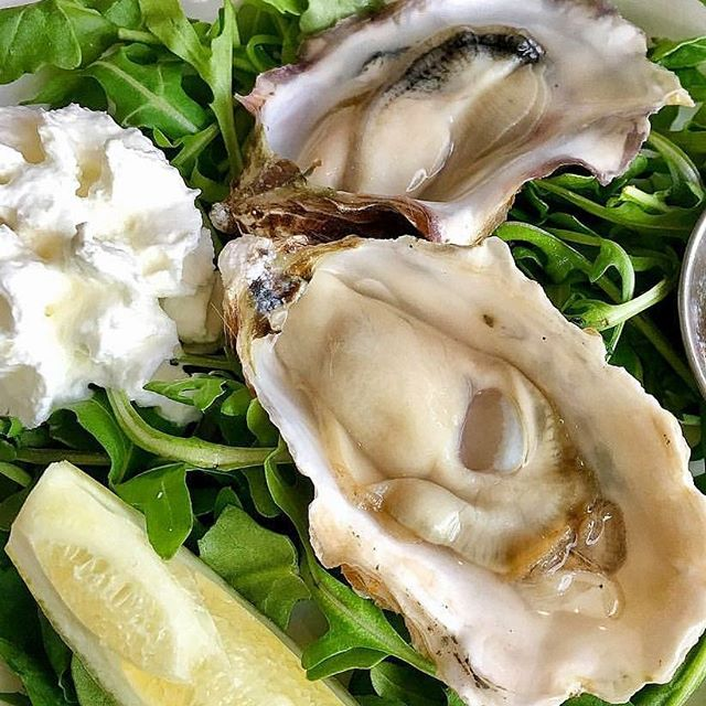 Shuck em and slurp em. $1 today for National Oyster Day. 3-5 live shucking.