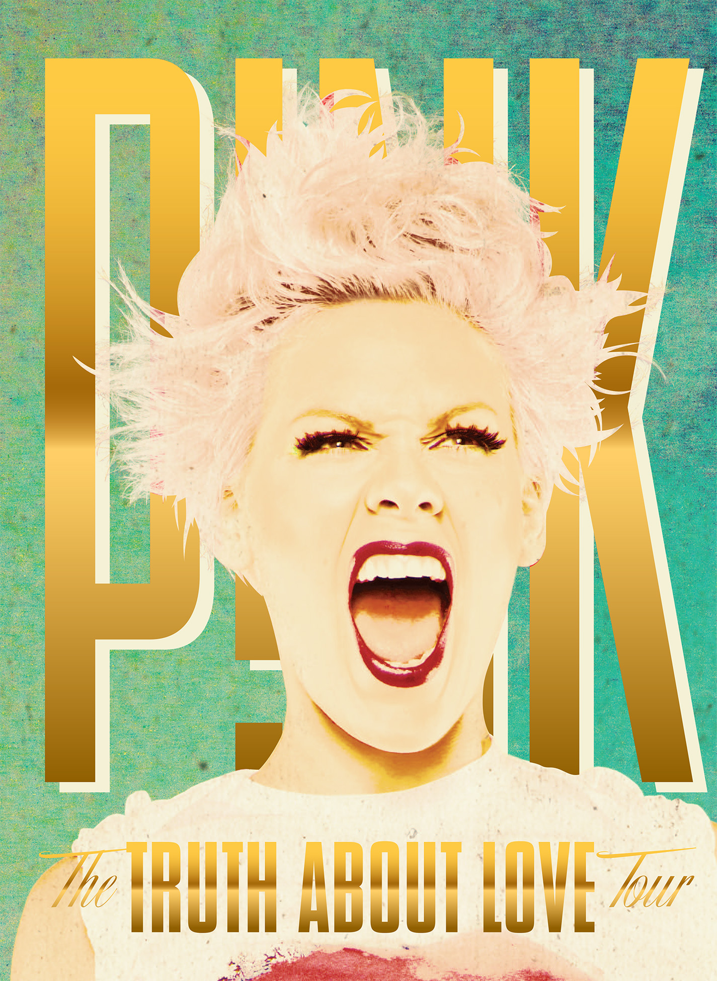 P!NK_TTAL_2013_Tourbook_cover.jpg
