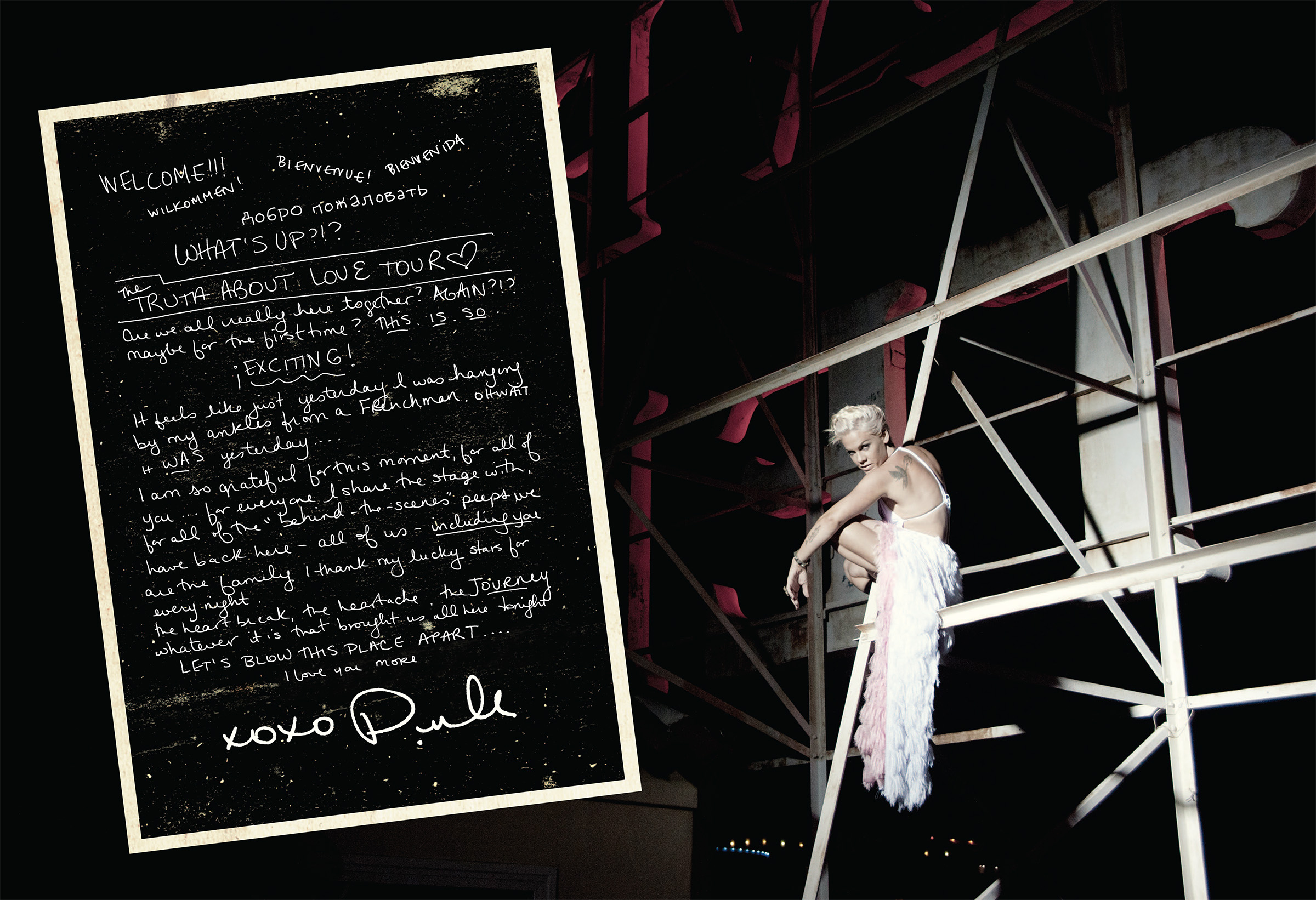 P!NK_TTAL_2013_Tourbook_spread_5.jpg