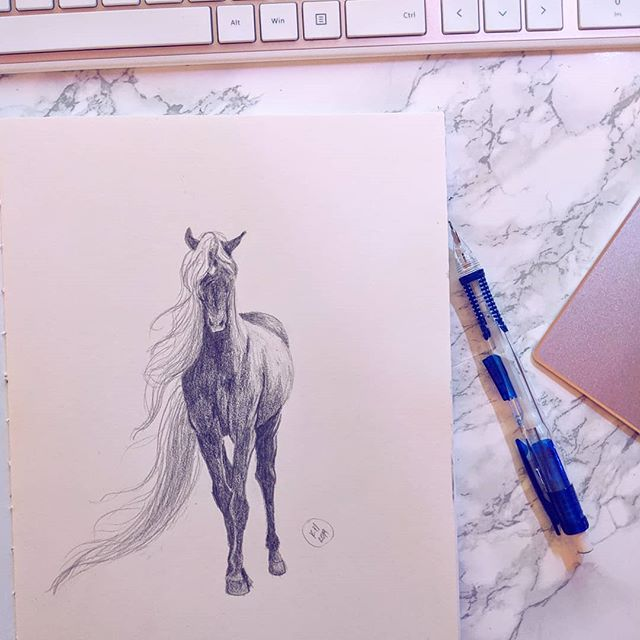 Quick pony sketch before bed last night 🐎💕 : : : : : : : : : : : : : : #graphite #sketch #sketchbook #drawing  #illustratorsoninstagram #illustrationartists #illustrator #illo #illustration_daily #illustrationart #illustration  #illustrationdaily  #sketch_dailydose #animesketch #dailyart #instadaily  #art_spotlight #artcollective #artofinstagram #artistsofinstagram #artistsoninstagram #pastelaesthetic #horseofinstagram #poniesofinstagram #pony #hairgoals #doodle #doodlesofinstagram #whitemarble #marble