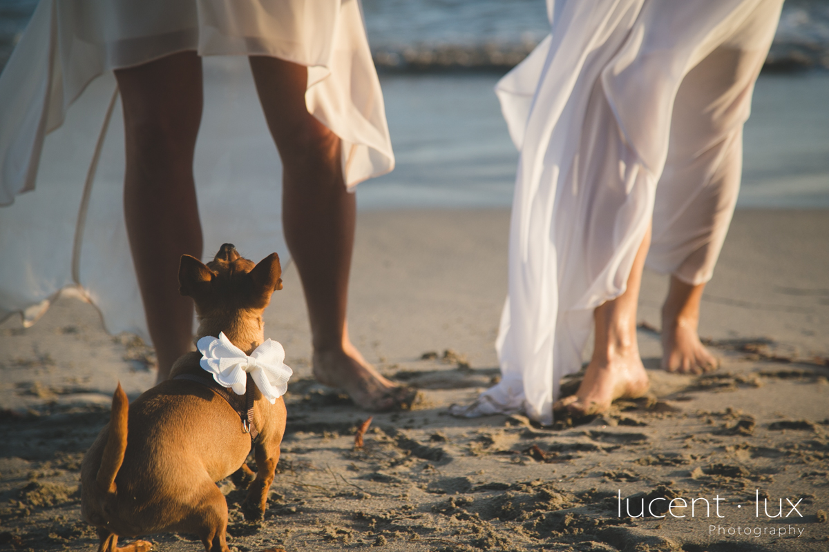 Washington_DC_Photographer_Beach_Wedding_Photography_Maryland-115.jpg
