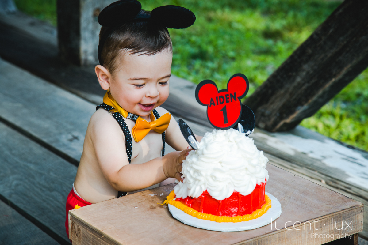 Smash_Cake_Baby_Photography_Maryland_DC_Baltimore_Jerusalem_Mill_State_Park_Portraits-211.jpg