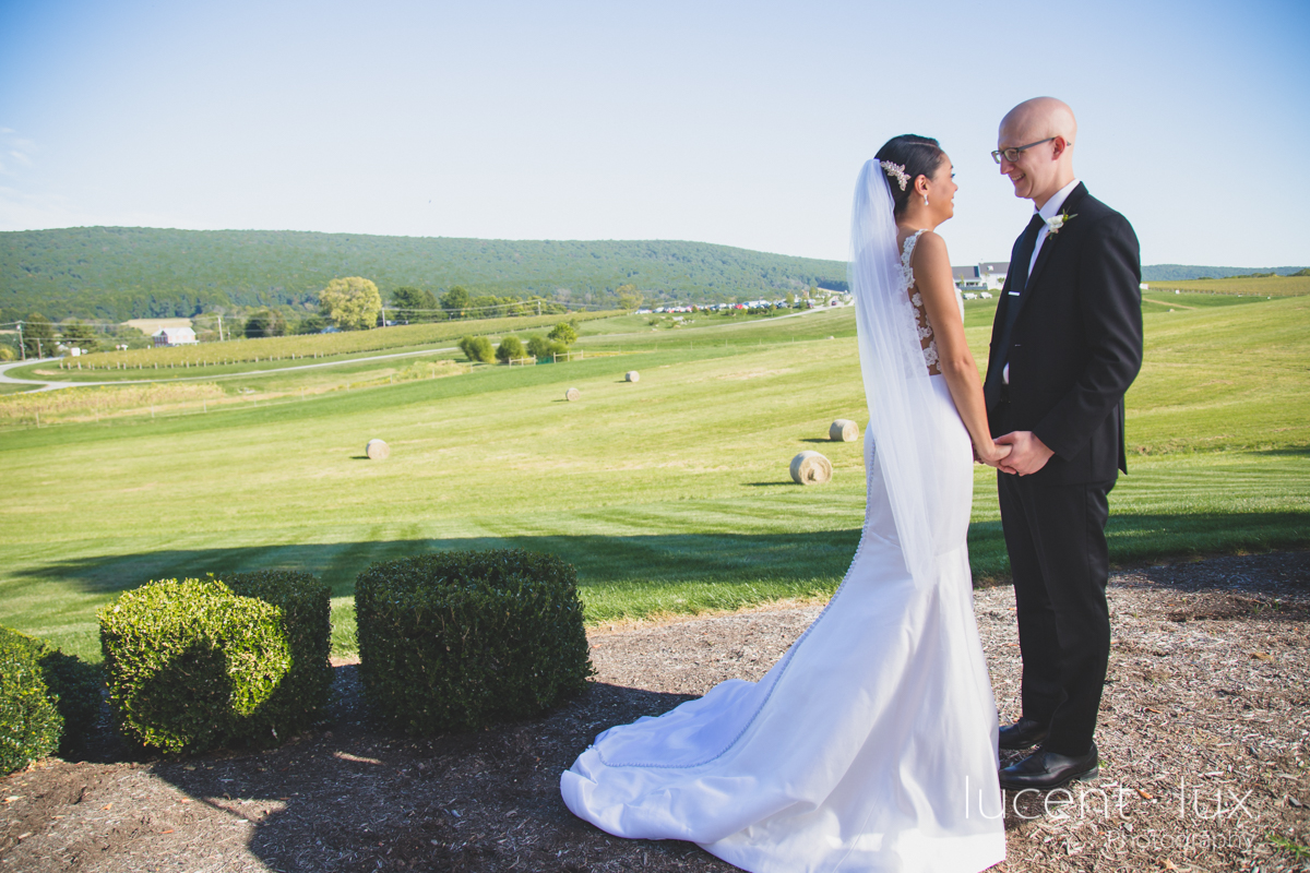Maryland_Wedding_Photographer_Big_Cork_Vineyards_Wedding_Pennsylvania_Photography-224.jpg