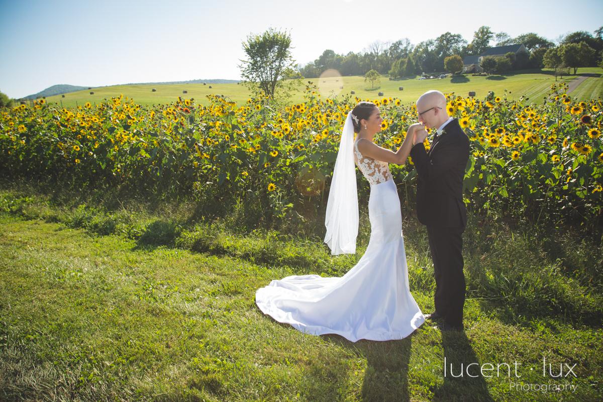 Maryland_Wedding_Photographer_Big_Cork_Vineyards_Wedding_Pennsylvania_Photography-228.jpg