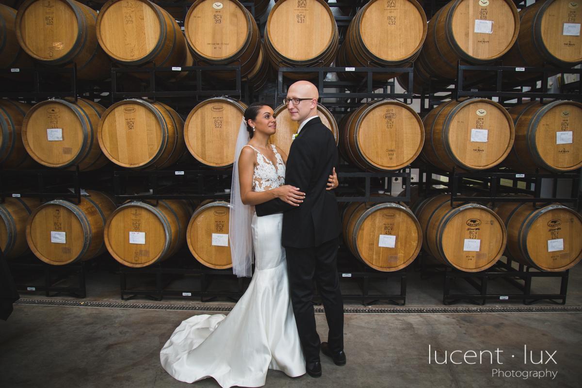 Maryland_Wedding_Photographer_Big_Cork_Vineyards_Wedding_Pennsylvania_Photography-233.jpg
