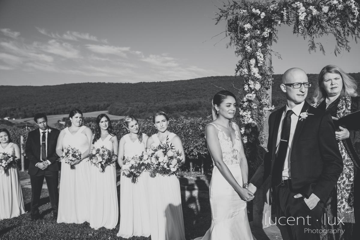 Maryland_Wedding_Photographer_Big_Cork_Vineyards_Wedding_Pennsylvania_Photography-245.jpg