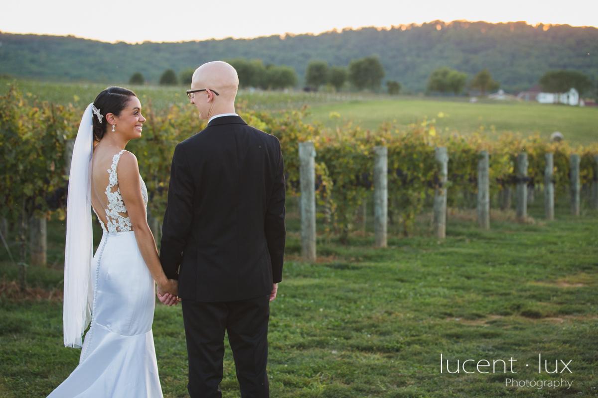 Maryland_Wedding_Photographer_Big_Cork_Vineyards_Wedding_Pennsylvania_Photography-267.jpg