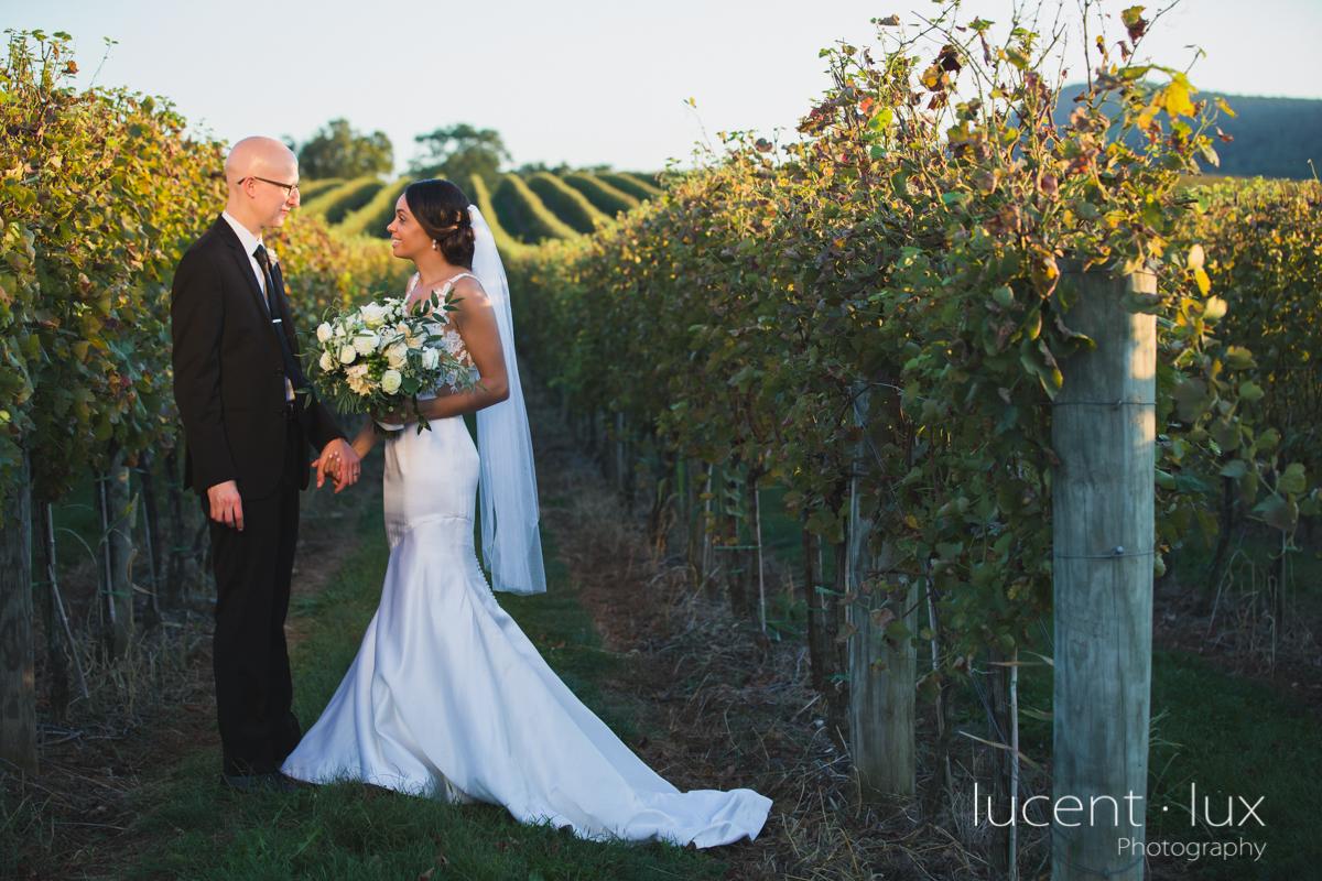 Maryland_Wedding_Photographer_Big_Cork_Vineyards_Wedding_Pennsylvania_Photography-268.jpg