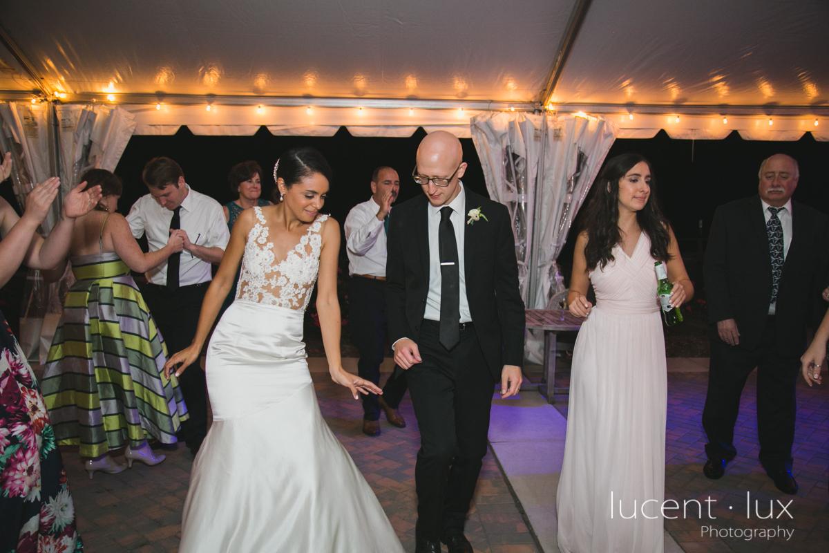 Maryland_Wedding_Photographer_Big_Cork_Vineyards_Wedding_Pennsylvania_Photography-292.jpg