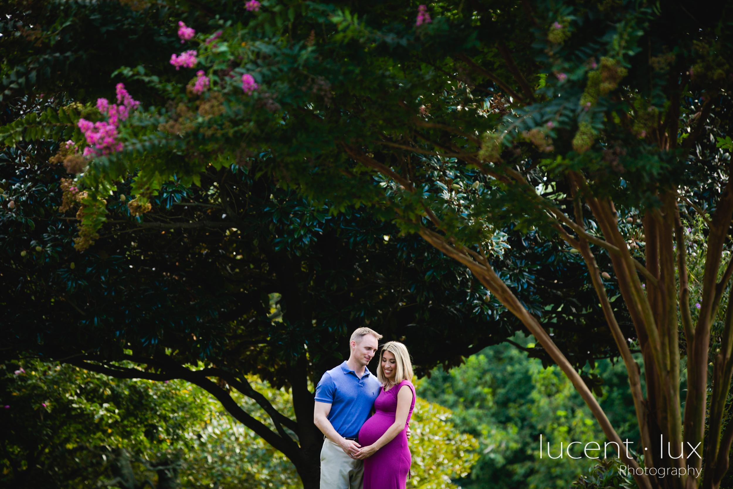 Maternity-Photography-Maryland-Baltimore-Photographer-Family-Portraits-Couple-Engagement-Newborn-201.jpg