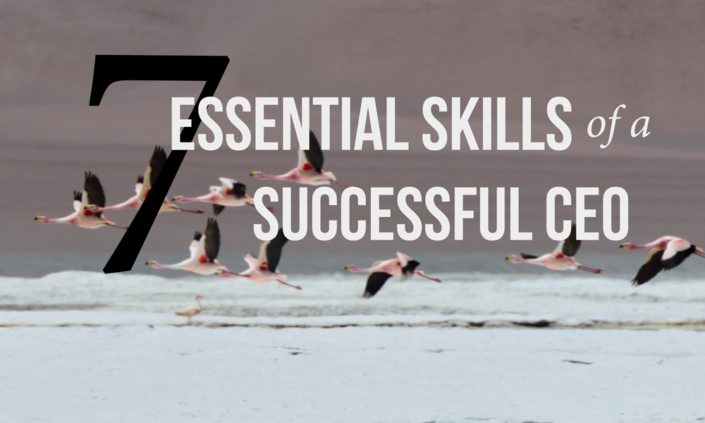 Seven-essential-skills-of-a-succesful-Cover.jpg