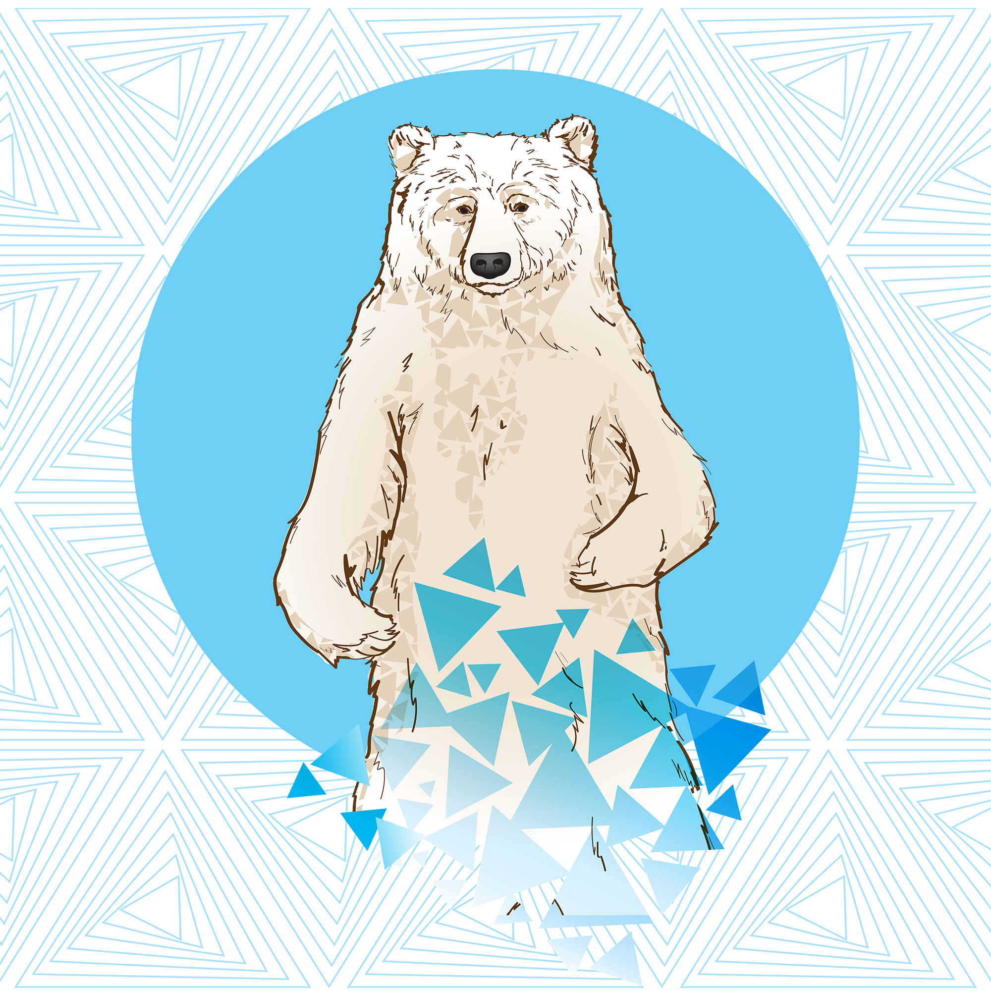 Bear_Pattern.jpg