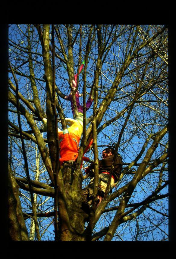 Me in the Tree, the Tree in Me, 2001, Paul Margolis