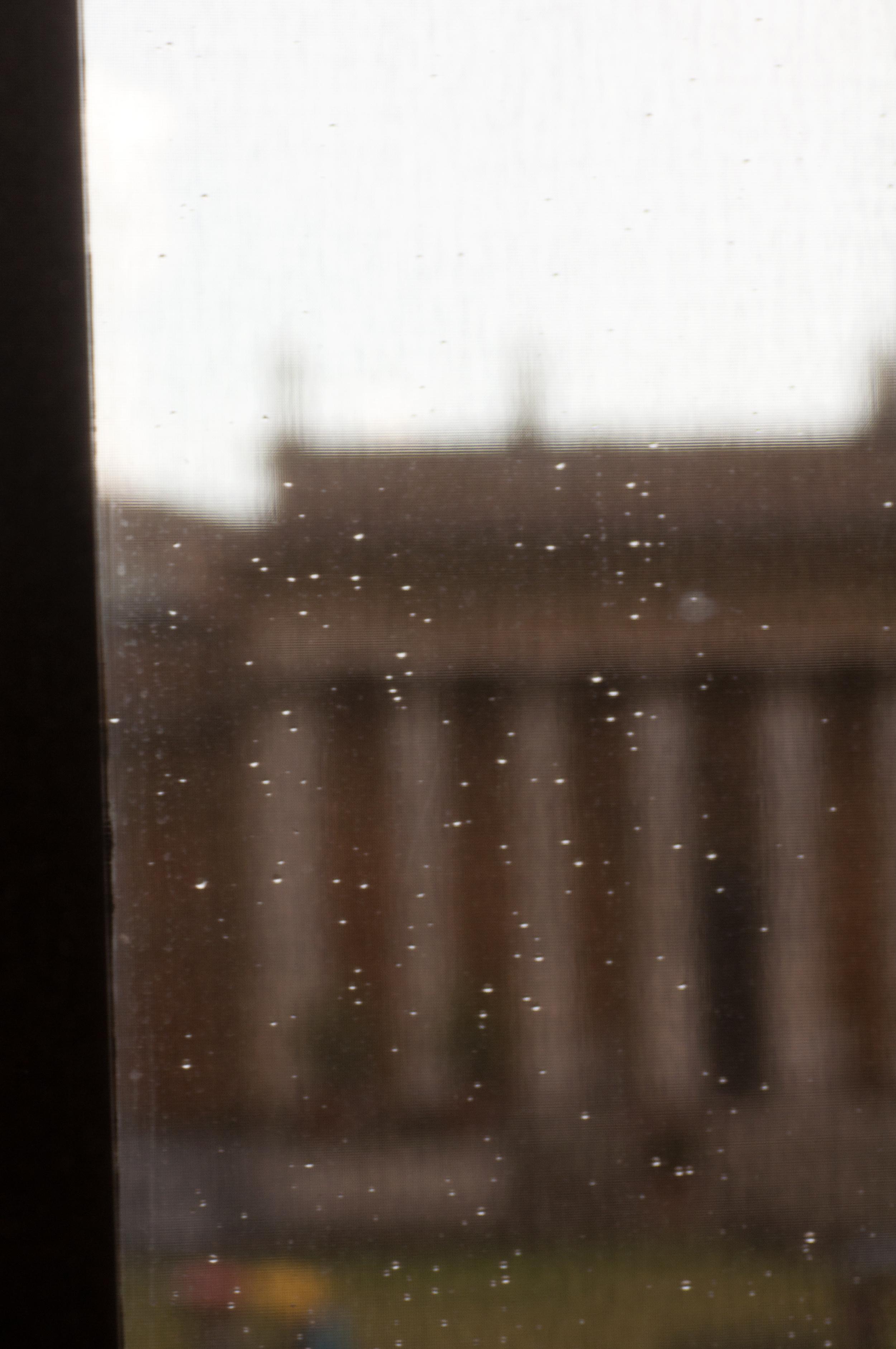 Eyelids:  Vatican Museum, Rome, Italy.