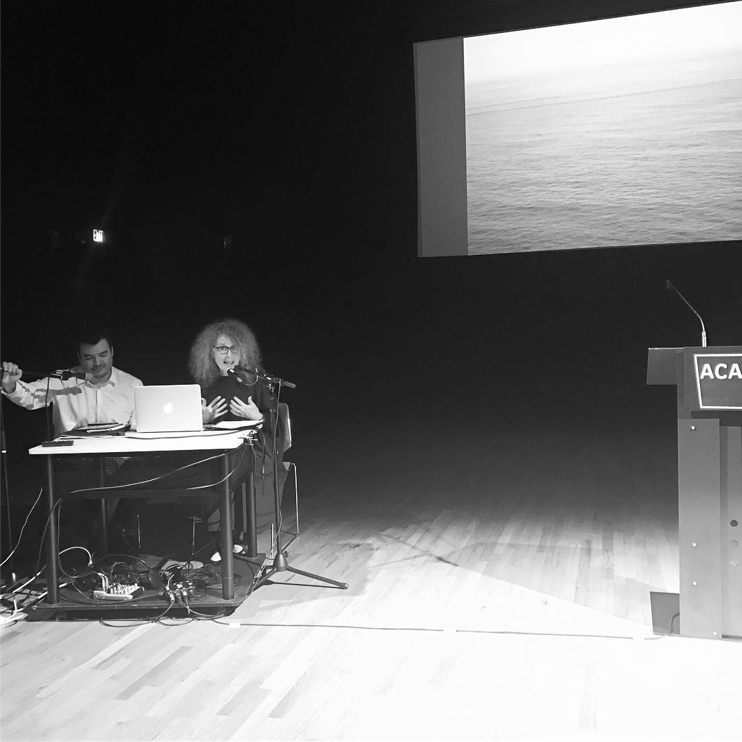 performance with terri witek at the atlantic center for the arts, january 2017  (photos by lindsay marsh)