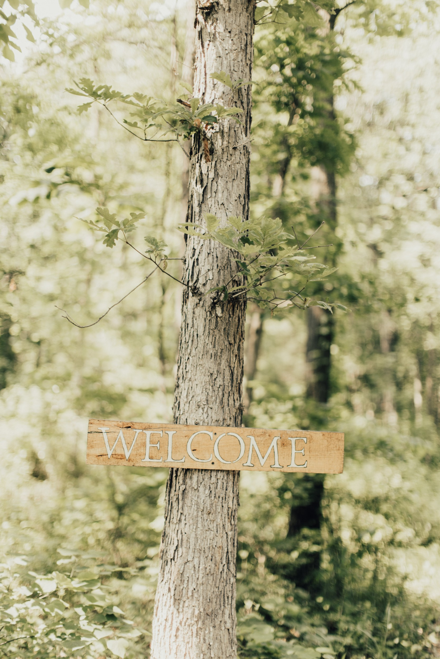 Country Wedding-80.jpg