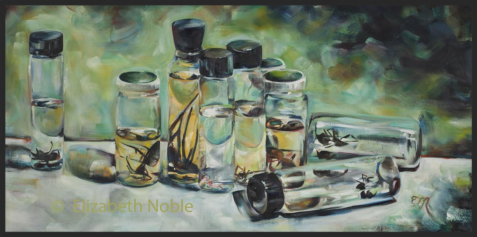 E Noble Jars  Wmk web.jpg