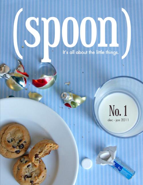 Issue No. 1 – Dec 2010 / Jan 2011