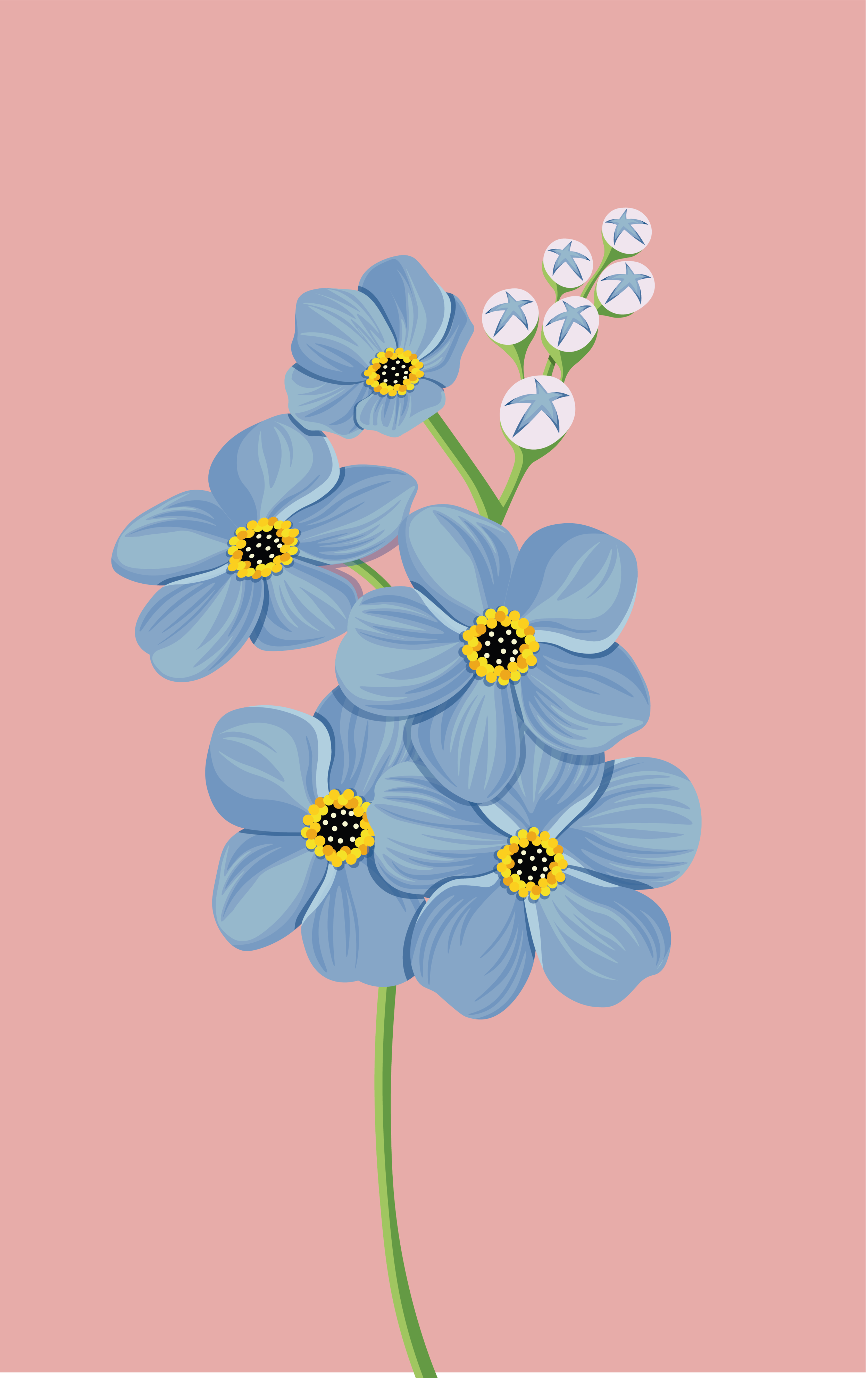 Flower_CARD_Tavola disegno 1.png