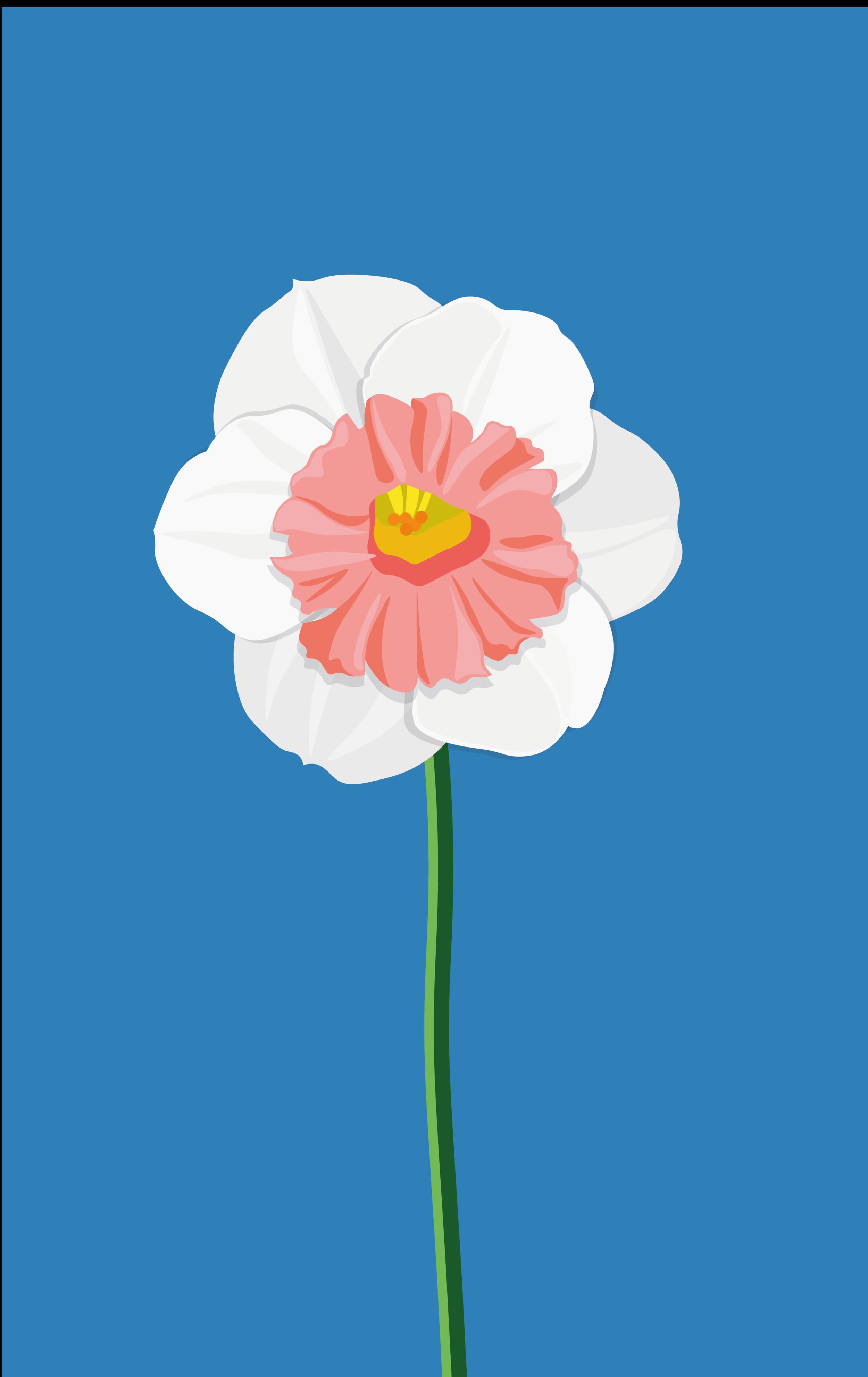 Flower_CARD_Tavola disegno 1 copia 3.png