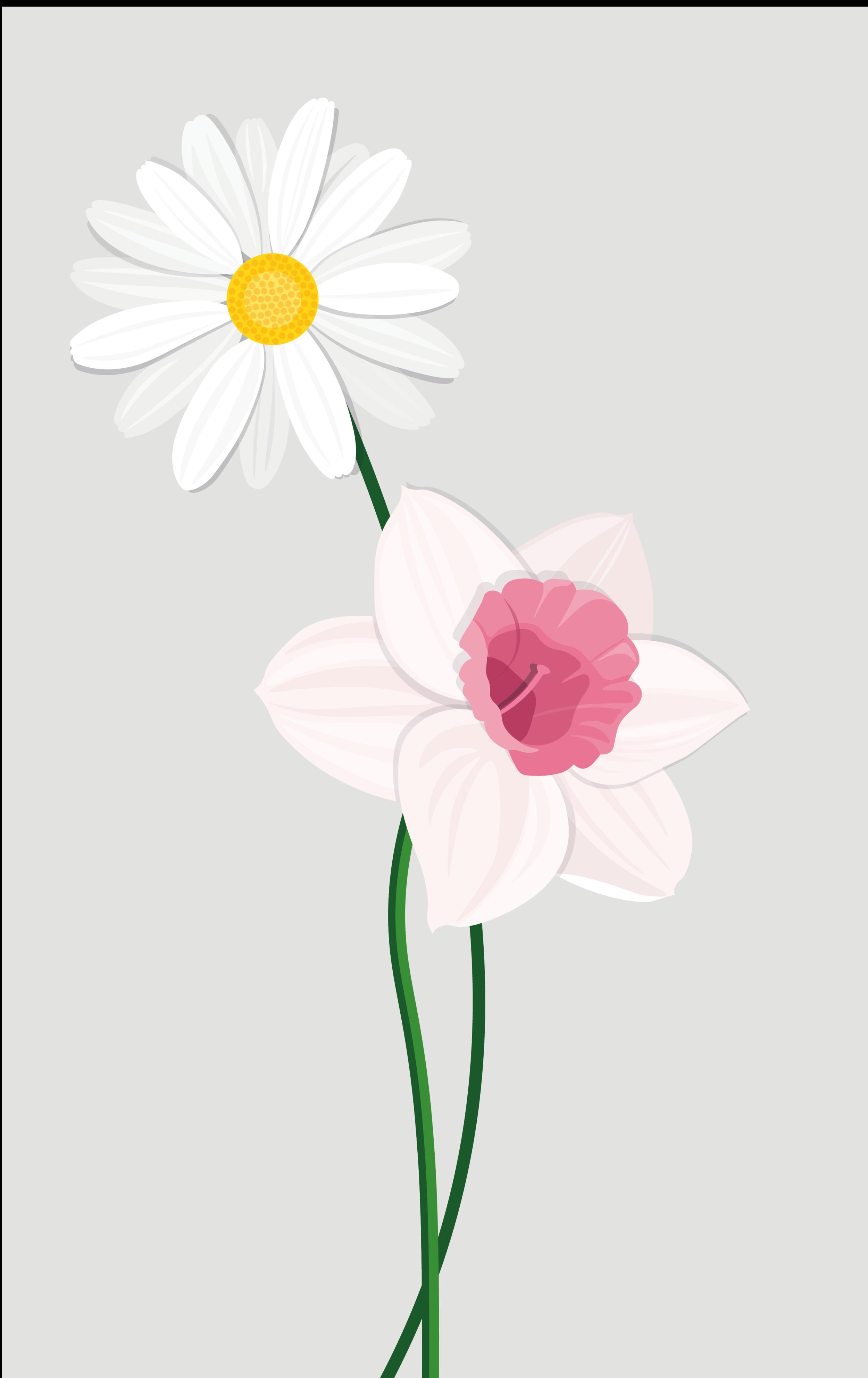 Flower_CARD_Tavola disegno 1 copia 2.png