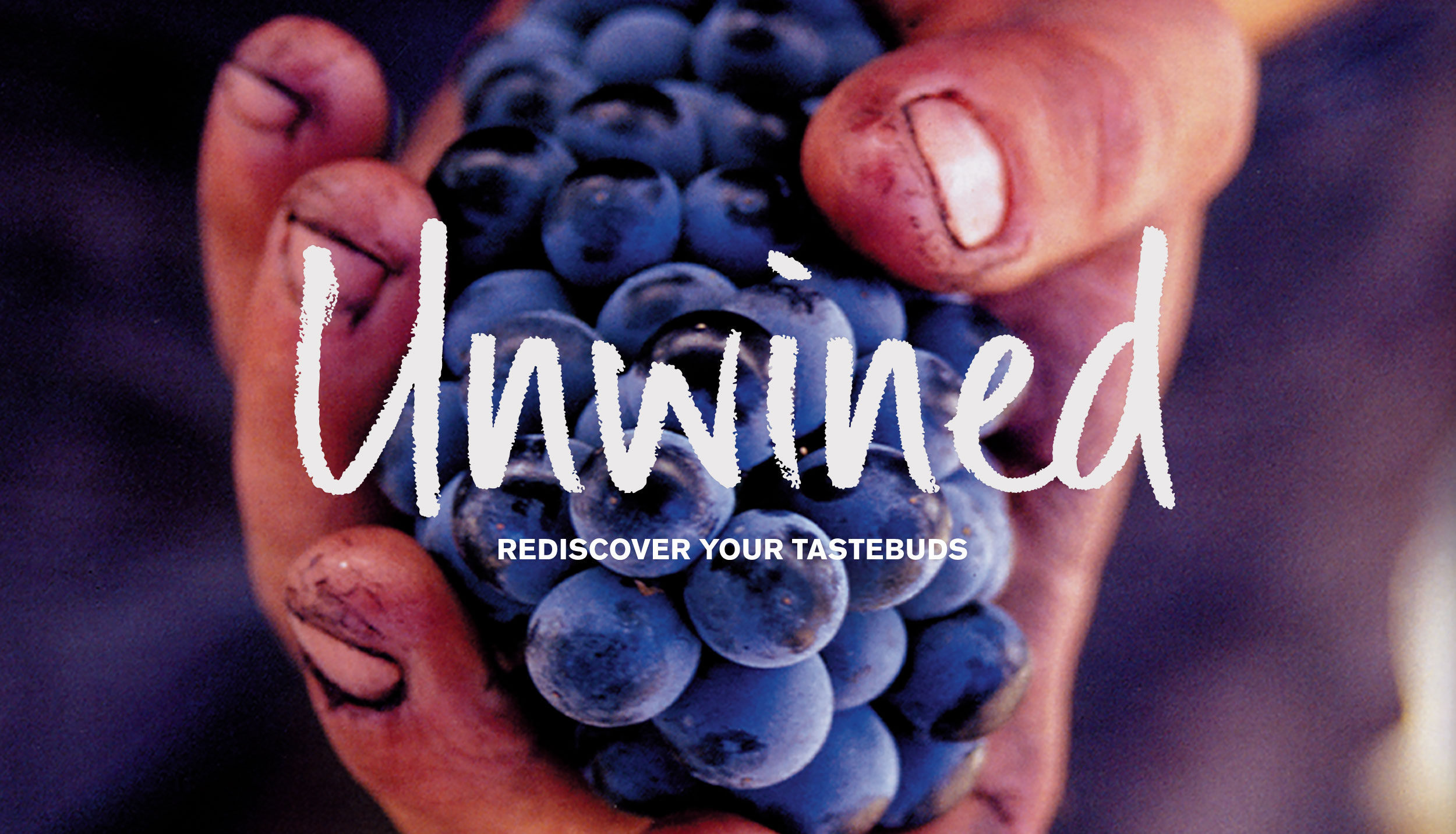 Unwined brand identity – Design by Ian Whalley