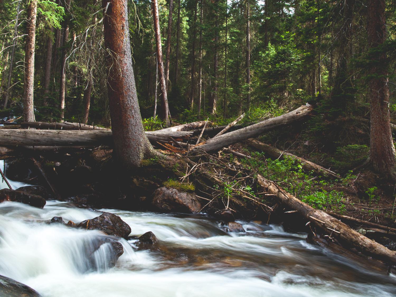 Mountain Stream - Outdoors