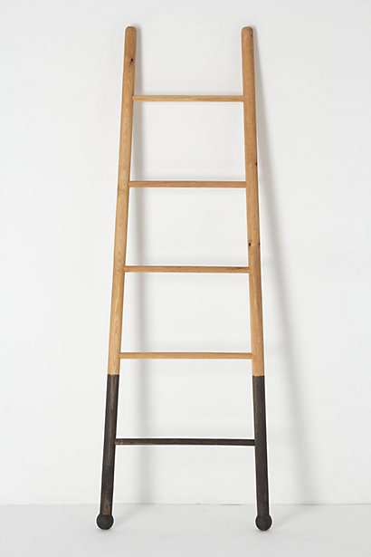 Anthropologie Submergent Ladder.jpg