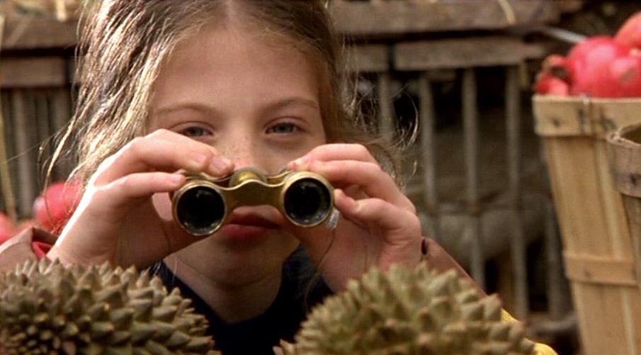 -Harriet-the-Spy-michelle-trachtenberg.jpg