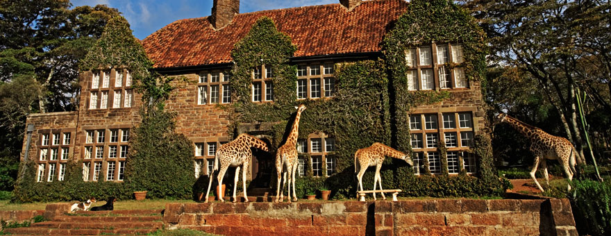 giraffe-manor.jpg