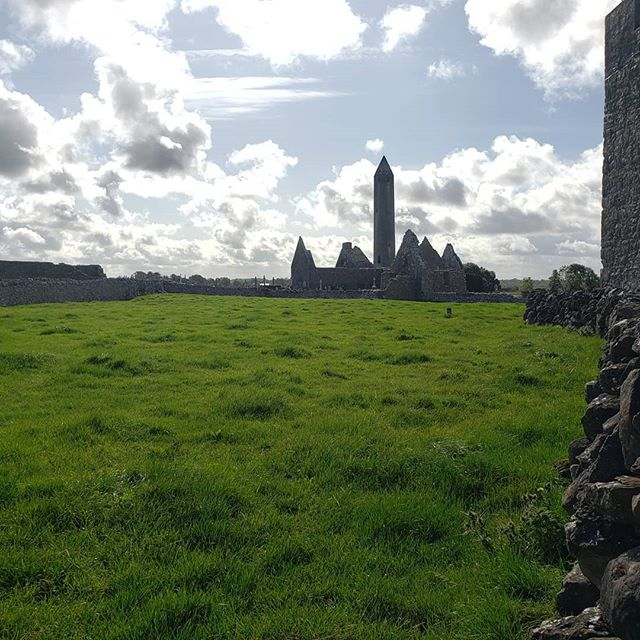 At one point along our drive to the cliffs of Moher we came around a corner and saw this tower and there was an immediate and unanimous decision to pull over. Bonus! the second car came to the same conclusion 3 min later. #oldstuff #snails #cows