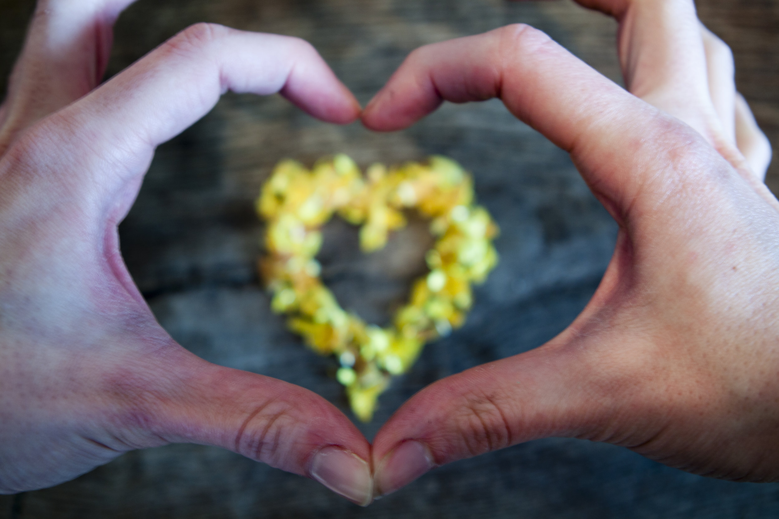 East Bay Psychotherapy can facilitate a loving closure of your marriage or partnership.