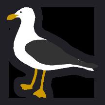 Seagull art by Taryn Johnson