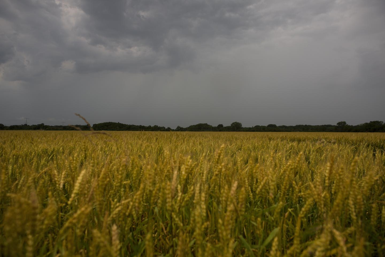 storm over midewin prairie, illinois