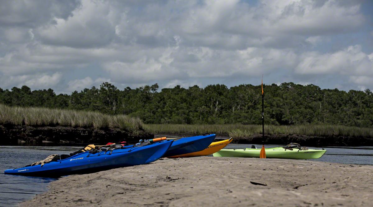 The fleet on a sandbar.