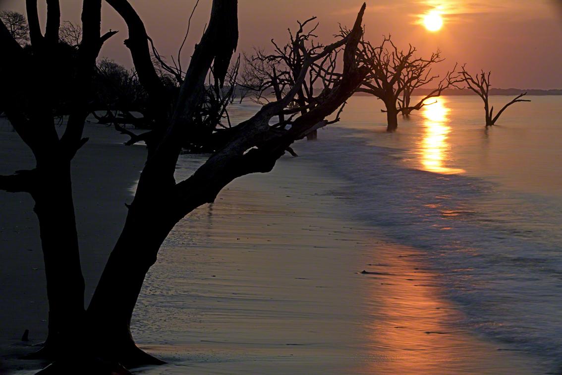the sun rises at the boneyard