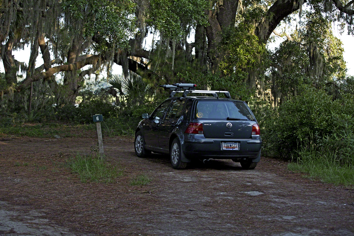 vw and spanish moss