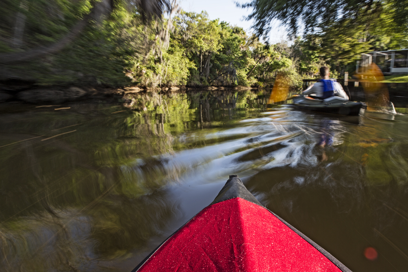 Some blurry action on Alligator Creek