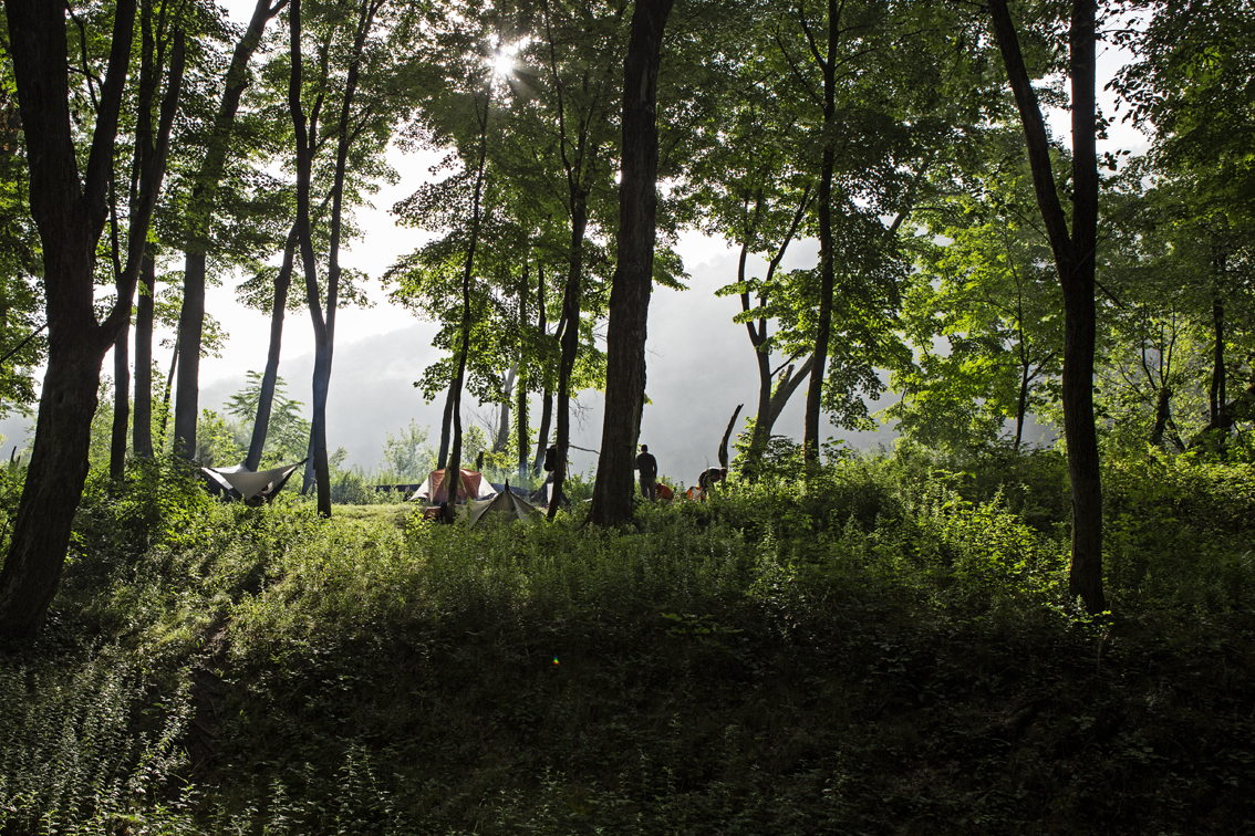 Early morning fog over the forest of poison ivy and our campsite.