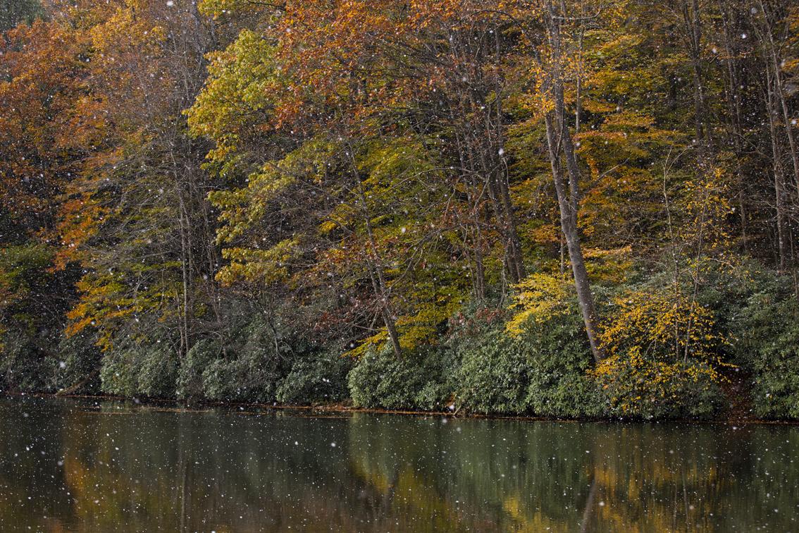 Big ol' snowflakes and fall colors at Kooser Lake.