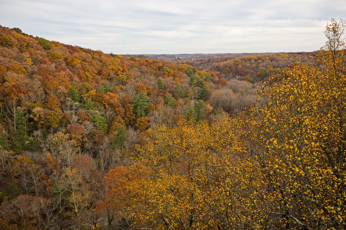 A great view from the top of Queen and King seat in Rocks State Park.