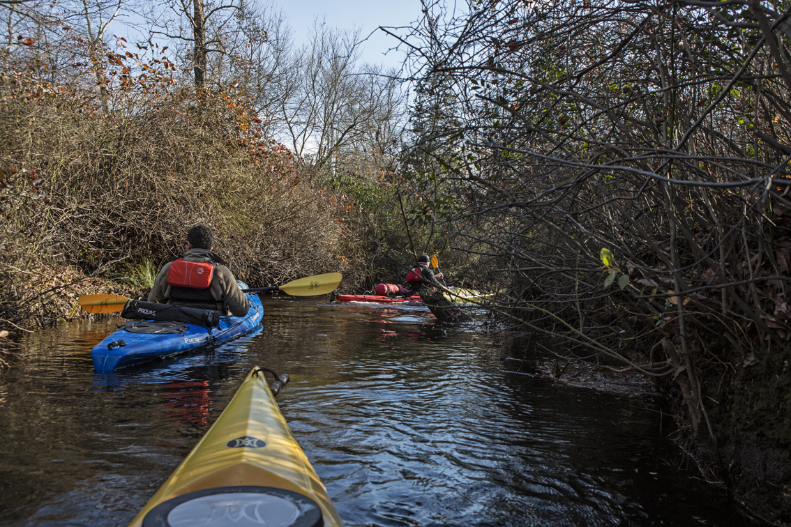 The first 2 miles of the Batsto River consisted of tight turns, thorn bushes and downed trees that had mostly been trimmed for boat traffic.