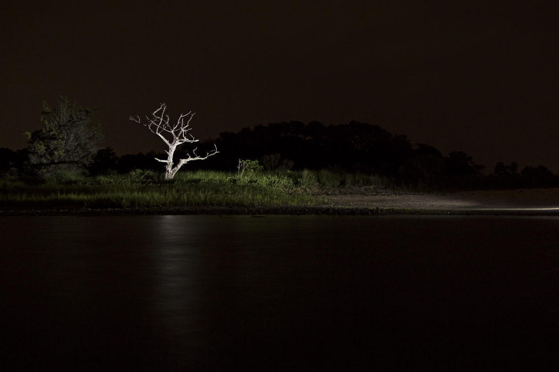 A skeleton tree near the house, on a late night kayak venture.