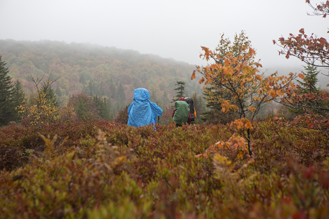 Heading into the Dolly Sods, wet and wild.