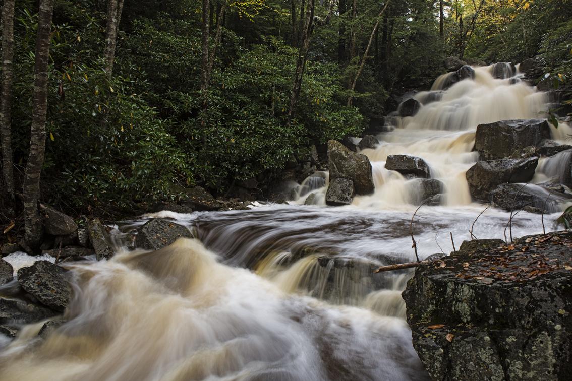 A pretty large waterfall on Stone Coal Run.