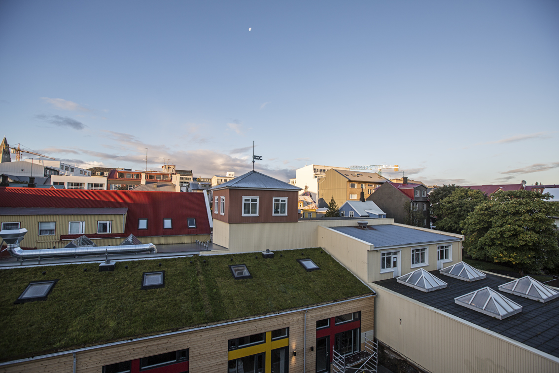The view from our balcony. Grass on a roof - Iceland is such a green country.