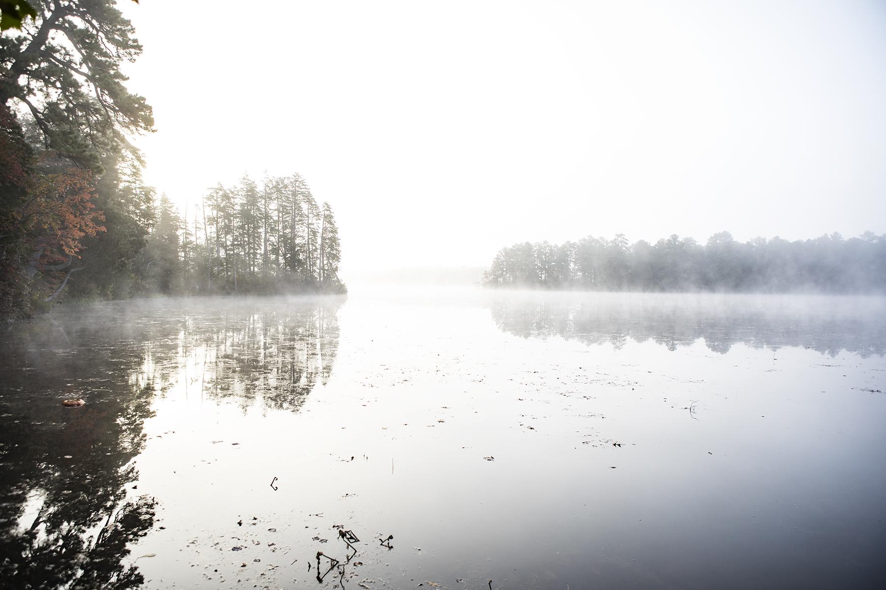 Fog burning off the lake.