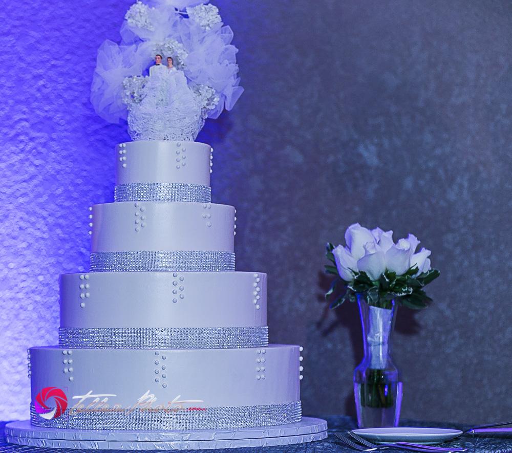 2015Orlando+Michelle_wedding_santaCruzCA-83.jpg
