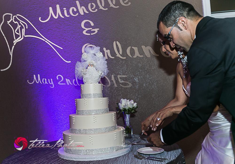 2015Orlando+Michelle_wedding_santaCruzCA-87.jpg