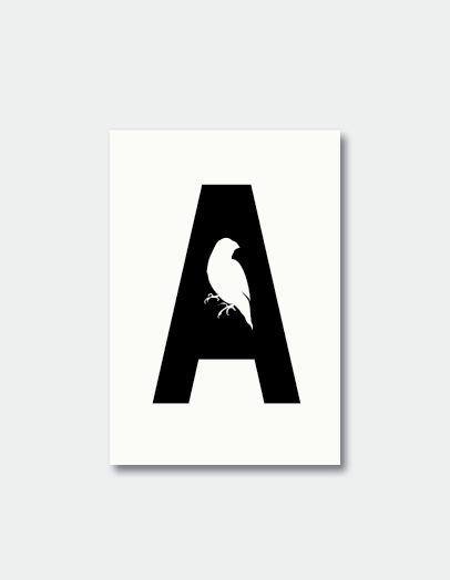 Finch & Ada